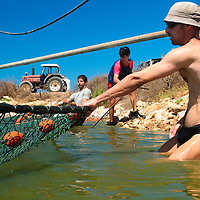 Fish-pond system