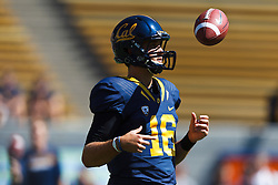 BERKELEY, CA - SEPTEMBER 08: Quarterback Allan Bridgford #16 of the California Golden Bears warms up before the game against the Southern Utah Thunderbirds at Memorial Stadium on September 8, 2012 in Berkeley, California. The California Golden Bears defeated the Southern Utah Thunderbirds 50-31. (Photo by Jason O. Watson/Getty Images) *** Local Caption *** Allan Bridgford
