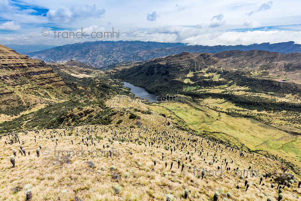 Paramo de Oceta and his Laguna negra Mongui Boyaca in Colombia South America