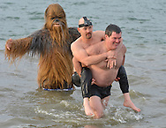 (010116 BOSTON MA)-Cheered on by Mark Poutenis, dressed as Chewbacca, Steve Sheerin carries his friend since childhood Erik Kondo during the annual L Street Brownies New Year's Day swim in South Boston. Kondo is wheelchair bound and he and Sheerin have taken the swim for nine years. Herald photo by Chris Christo