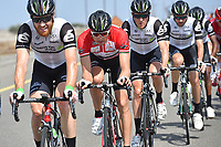 BOASSON HAGEN Edvald (NOR) Red Leader Jersey, PAUWELS Serge (BEL), Team Dimention Data (RSA) during the 7th Tour of Oman 2016, Stage 3, Al Sawadi Beach - Naseem Park (176,5Km), on February 18, 2016 - Photo Tim de Waele / DPPI