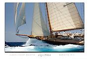 Herreshoff schooner Marietee cusom poster.