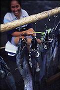 Fish Market, Avarua Town, Rarotonga, Cook Islands<br />