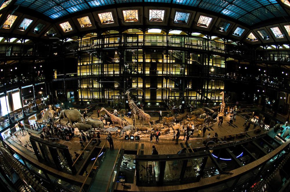 Natural History Museum Workshops