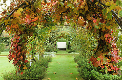 The vine tunnel in the Edwardian Garden at Powis Castle