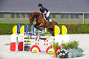 Giovanni<br /> Future Sport Horse Sales 2017<br /> © DigiShots
