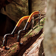 Petzl Ergonomics sitting in a dead log during the summer months  after drytooling, waiting for some ice climbing.