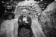 A worker leaning against bales of jute at Tay Spinners mill in Dundee, Scotland. This factory was the last jute spinning mill in Europe when it closed for the final time in 1998. The city of Dundee had been famous throughout history for the three 'Js' - jute, jam and journalism.