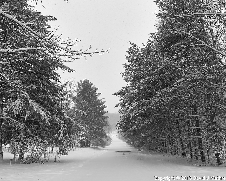 Nor'easter in progress. Second day of spring. Image taken with a Leica CL camera and 18 mm f/2.8 lens.
