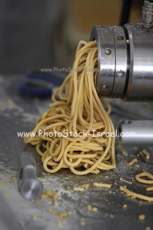 Spaghetti manufacturing