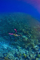 Hiking and Snorkeling Guam