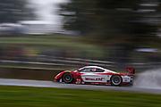 October 1- 3, 2015: Road Atlanta, Petit Le Mans 2015 - Curran, Cameron, Max Papis Action Express Racing DP