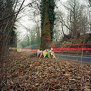 "This memorial has been placed where young men called Steve, Si and Sammy died on the A286 Easebourne, Sussex, England, UK. If we drove past this place where someone's life ended, the victim would just be an anonymous statistic but flowers are left to die too and touching poems and dedications are written by family and loved-ones. One reads: ""?I am the lucky one - my son survived - I wish so much it had been all of them.? From a project about makeshift shrines: ?Britons have long installed memorials in the landscape: Statues and monuments to war heroes, Princesses and the socially privileged. But nowadays we lay wreaths to those who die suddenly - ordinary folk killed as pedestrians, as drivers or by alcohol, all celebrated on our roadsides and in cities with simple, haunting roadside remembrances?"