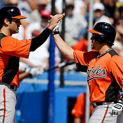 Mar 5, 2013; Dunedin, FL, USA; Baltimore Orioles left fielder Steve Pearce (28) celebrates following a two run homerun scoring Conor Jackson (36) during the top of the second inning of a spring training game at Florida Auto Exchange Park. Mandatory Credit: Derick E. Hingle-USA TODAY Sports
