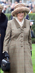 The Prince of Wales and the Duchess of Cornwall at Ascot Races - 24 Nov 2017