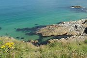 Newquay snorkeling