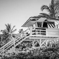 Maui Hawaii lifeguard tower at Kama'ole Beach with palm trees black and white photo. Copyright ⓒ 2019 Paul Velgos with All Rights Reserved.