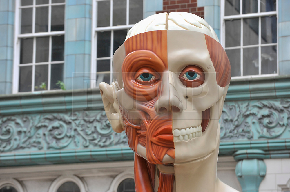 """© Licensed to London News Pictures. 24/06/2017. London, UK. A 21 feet tall, 2.5 tonne bronze sculpture called """"Temple"""" by Damien Hirst is unveiled near the Lloyds Building in the City of London.  The artwork will be on display as part of """"Sculpture in the City"""", a festival of sculpture in the City of London showing works by leading artists. Photo credit : Stephen Chung/LNP"""