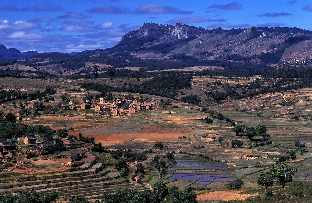 MADAGASCAR: Fianarantsua highlands<br /> Mud huts and terracing characterize the landscape of the central highlands