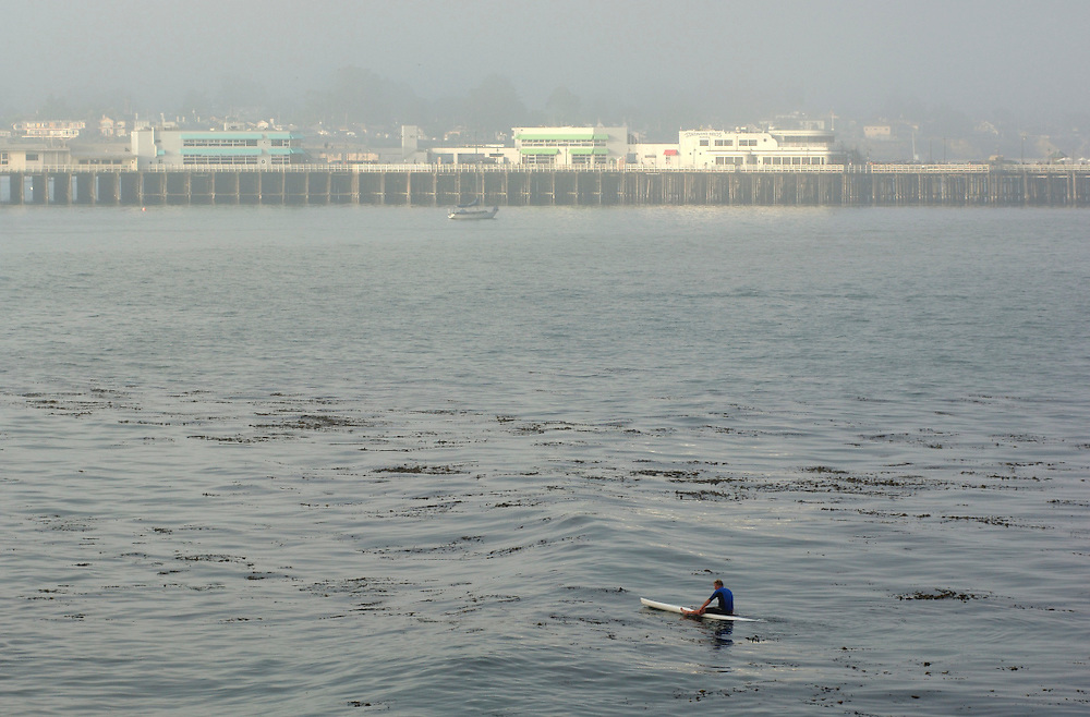 Surfer and Santa Cruz Pier, Lighthouse Field State Park, Santa Cruz, California, United States of America