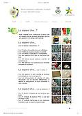 03 RACCOLTA DIFF ARRICREO E LINK PAGINE