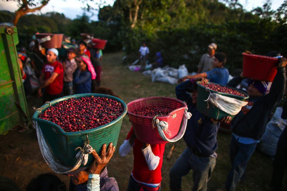Hacienda Alsacia photographed during the 2016 Starbucks Origin Experience for Partners. (Joshua Trujillo, Starbucks)