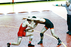 2013 Wrestling Championship