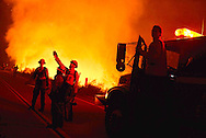 The Cabin Fire burns Friday evening in the Angeles National Forest off Highway 39 August 14, 2015. The fire started Friday afternoon and destroyed multiple structures. The fire was 0% contained and estimated at 1,800 acres.