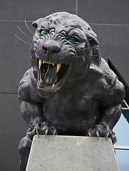 CHARLOTTE, USA - Friday, August 1, 2014: A panther outside the Bank of America Stadium on day twelve of the club's USA Tour. (Pic by David Rawcliffe/Propaganda)