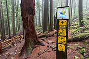 Trail sign on the Trans Canada Trail in Nelson Canyon Park near Vancouver, British Columbia.