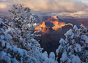 A winter storm begins to clear allowing sunlight to bathe Isis Temple in a warm light. From Mather Point on the South Rim of Grand Canyon National Park in Arizona.
