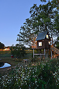 Treehouse Vineyards in Monroe, North Carolina.