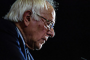 Despite big losses in the California primary, a defiant Bernie Sanders vows to fight on despite pressure from the Democratic Party to drop out of the race. June 7, 2016. Santa Monica, Calif. (Photo by Gabriel Romero ©2016)