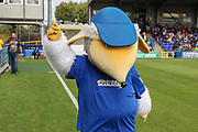 Haydon the Womble pointing at the sky during the EFL Sky Bet League 1 match between AFC Wimbledon and Wycombe Wanderers at the Cherry Red Records Stadium, Kingston, England on 31 August 2019.