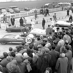 The Paddock at Goodwood Race track, Sussex in 1958.