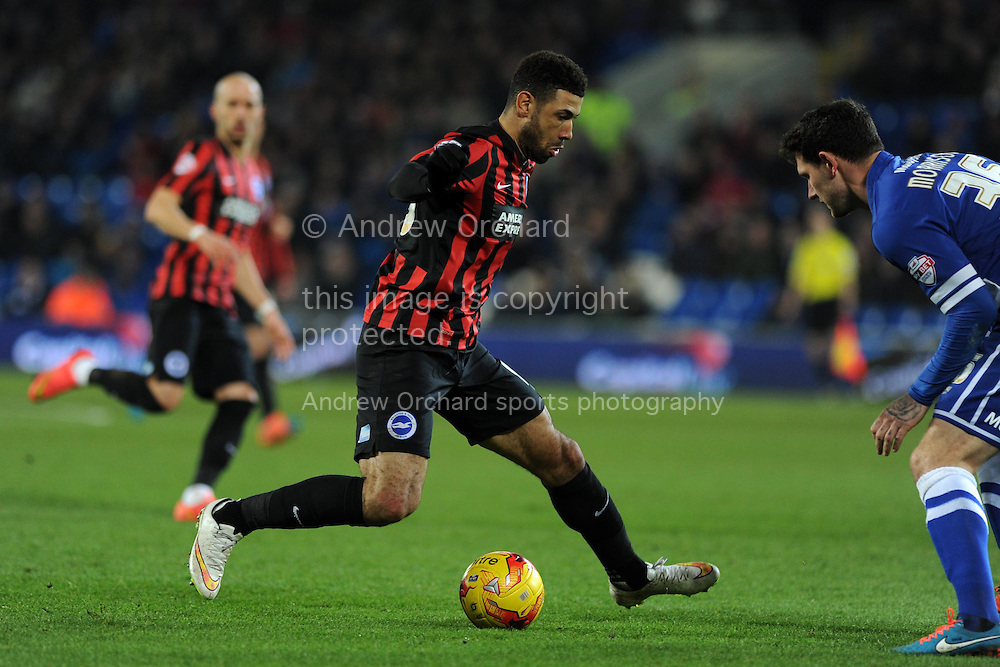 Leon Best of Brighton looks to go past Cardiff's Sean Morrison. Skybet football league championship match, Cardiff city v Brighton &amp; Hove Albion at the Cardiff city Stadium in Cardiff, South Wales on Tuesday 10th Feb 2015.<br /> pic by Andrew Orchard, Andrew Orchard sports photography.
