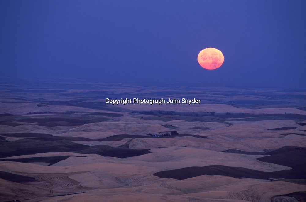 A full moon sets over the Palouse Country of Eastern Washington, reddened by atmospheric dust at harvesttime.