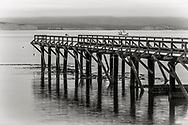 Pier at Drakes Bay, Point Reyes National Seashore, Marin County, California