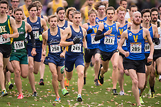 2013 CIS XC Windsor Lancers