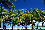 Aitutaki, Cook Islands, Polynesia