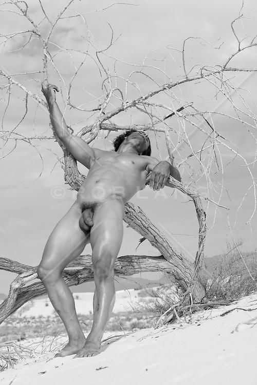 male nude outdoors in desert