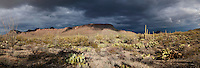 Overcast <br />