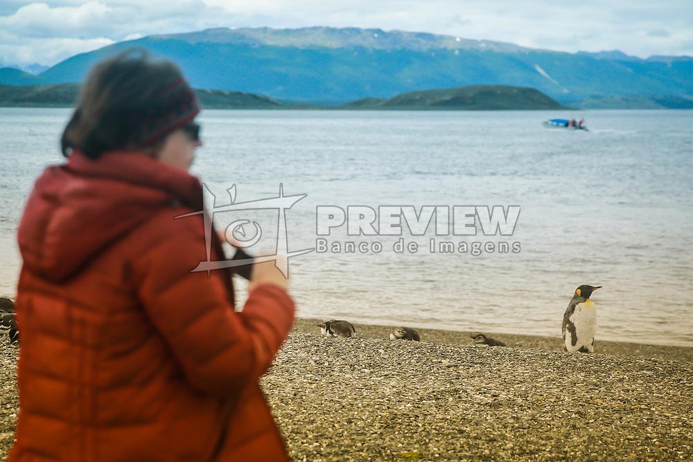 Turistas na Isla Martillo, mais conhecida como Pinguinera, é uma ilha do Canal de Beagle procurada pelos pinguins em seu período de reprodução. FOTO: Jefferson Bernardes/ Agência Preview