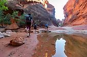 Chums Southern Utah - Backpacks