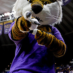 Jan 5, 2013; Baton Rouge, LA, USA; LSU Tigers mascot Mike the Tiger during the second half of a game against the Bethune-Cookman Wildcats at the Pete Maravich Assembly Center. LSU defeated Bethune-Cookman 79-63. Mandatory Credit: Derick E. Hingle-USA TODAY Sports