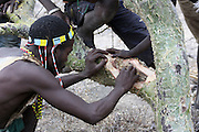 Africa, Tanzania, Lake Eyasi, Hadza tribe. A small tribe of hunter gatherers AKA Hadzabe Tribe. Men collect honey
