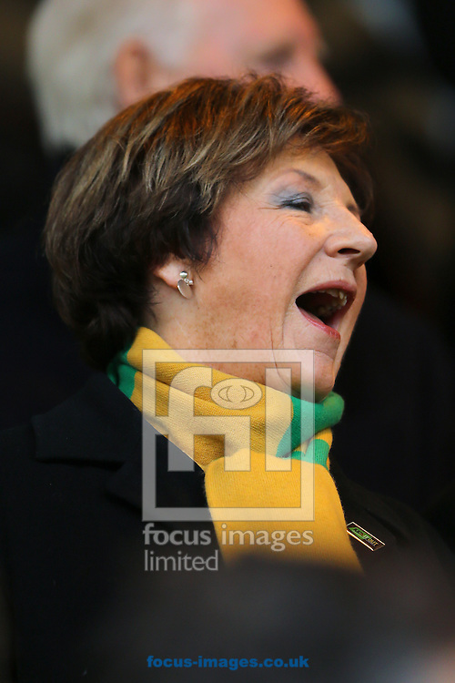 Joint majority shareholder of Norwich City, Delia Smith CBE during the Sky Bet Championship match at Carrow Road, Norwich<br /> Picture by Richard Calver/Focus Images Ltd +447792 981244<br /> 07/02/2015