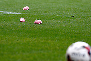 Lots of foam pigs get thrown on to the pitch in protest during the EFL Sky Bet League 1 match between Charlton Athletic and Coventry City at The Valley, London, England on 15 October 2016. Photo by Andy Walter.