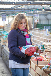 Buying potatoes at a garden centre