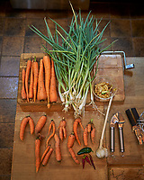 Carrots, Scallions, Garlic, Hot Peppers from Grow Tower #1. Image taken with a Leica CL camera and 23 mm f/2 lens (ISO 125, 23 mm, f/2, 1/50 sec).